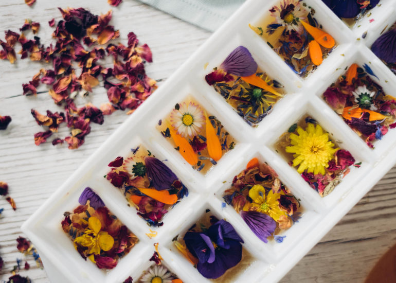 TreeofTea_Content_Recipe_Flowers_Ice_Tea_Farina_Hannemann_Renegade